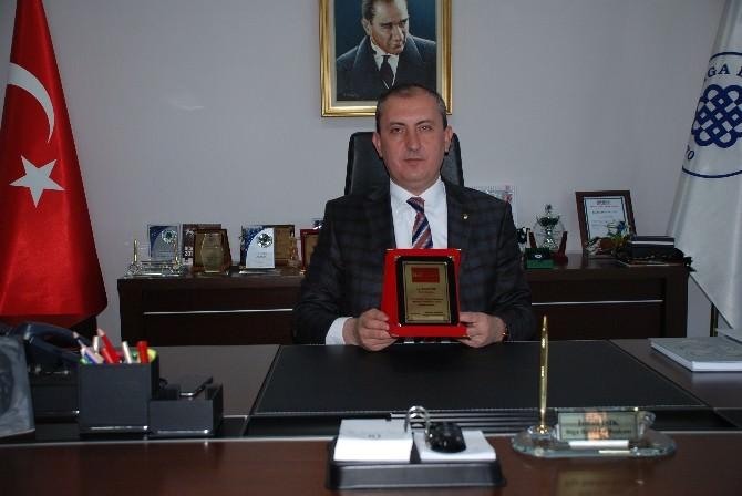 Biga Belediyesine Oscar Ödülü