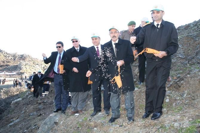 Marmaris'in Yanan Ciğerlerine 2 Milyon Tohum Ekildi