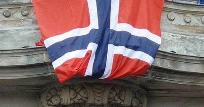 Avrupa Konseyi'nden Norveç'e uyarı