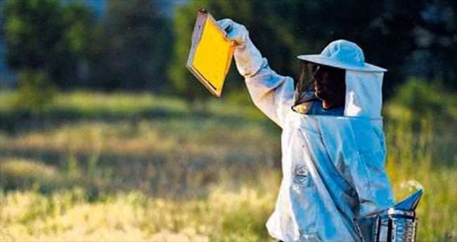 Tarım üreticisi sigortayı ihmal etmemeli