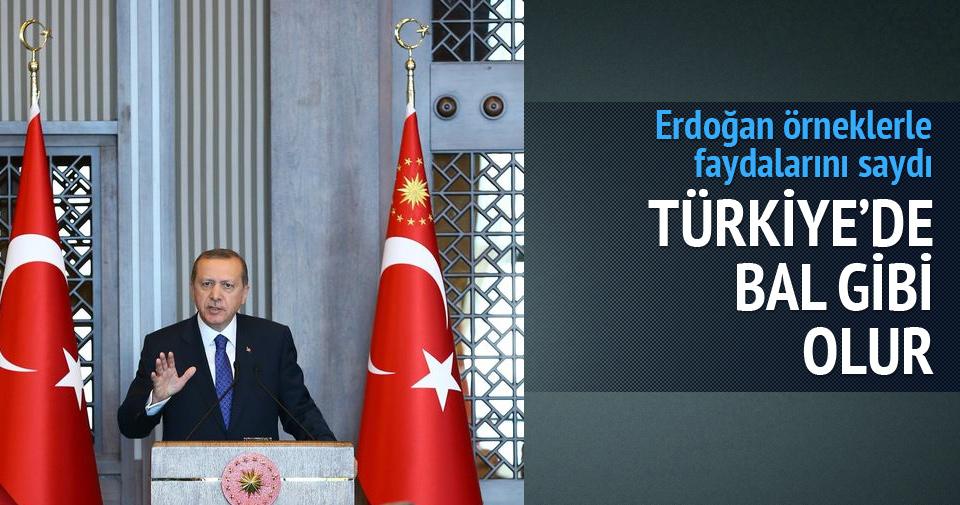 Türk tipi başkanlık sistemi bal gibi olur