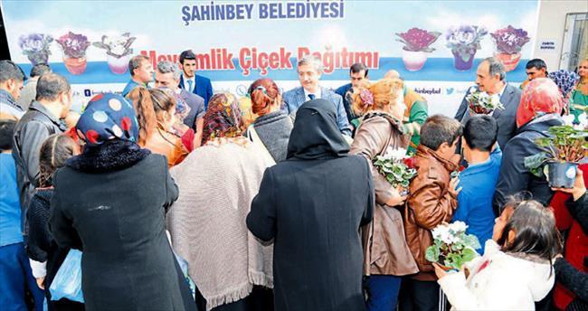 Şahinbey Belediyesi 80 bin çiçek dağıttı