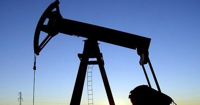 Türkiye ucuz petrole 'koştu'