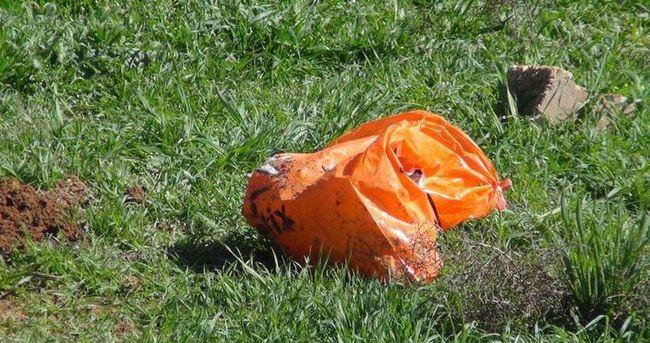 Kızıltepe'de ölü iki cenin bulundu