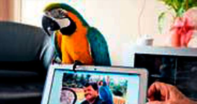 Özal'ın papağanı 'Baba'sını unutmadı