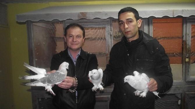 Eskişehir'in Güvercin Tutkunları