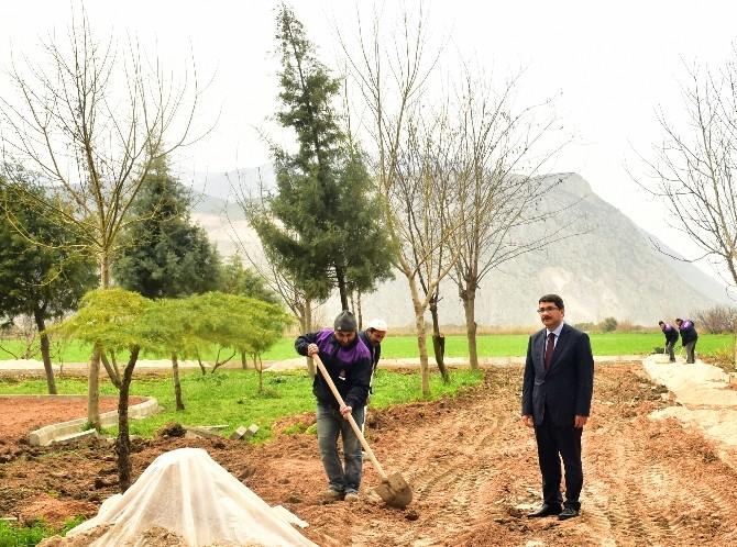Başkan Çelik'ten Özgecan Aslan Parkı'nda İnceleme
