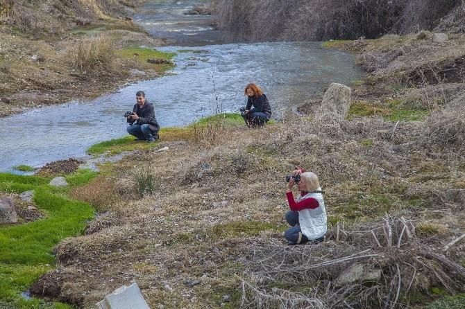 Ahlat, Fotoğrafçıların İlgi Odağı Oldu