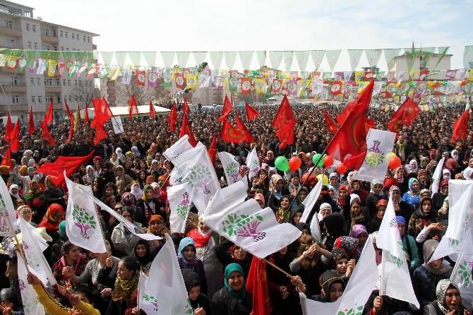 Ağrı'da Nevruz Kutlamaları