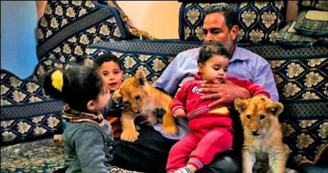 Mülteci kampında aslan besliyor