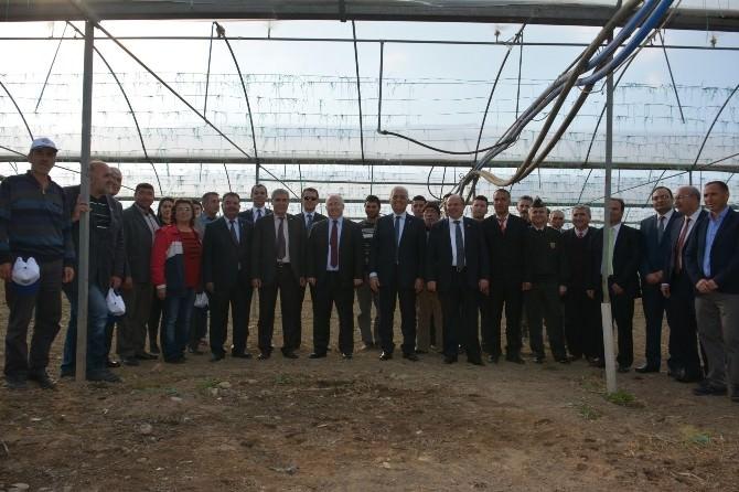 Köyceğiz'de Süs Bitkisi Üretimi İçin Protokol İmzalandı