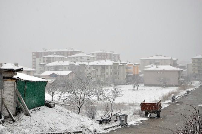 Erken Tomurcuklanan Kayısı Ağaçları Kardan Olumsuz Etkilendi