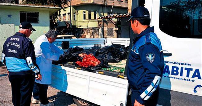 Mersin'de at eti baskını