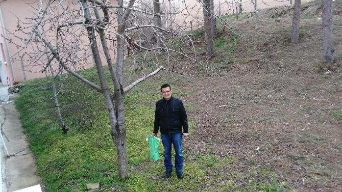 Meyve Ağaçlarına Bahar Dönemi Bordo Bulamacı Uygulama Uyarısı