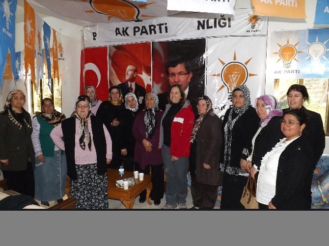 AK Parti Bodrum Teşkilatı Hızla Büyüyor