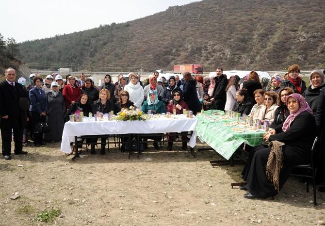 Bilecik'te Bereket Ormanına 600 Fidan Dikimi Yapıldı