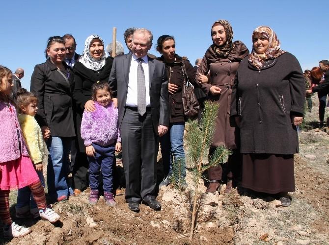 Nevşehir'de Bereket Ormanı Oluşturuldu