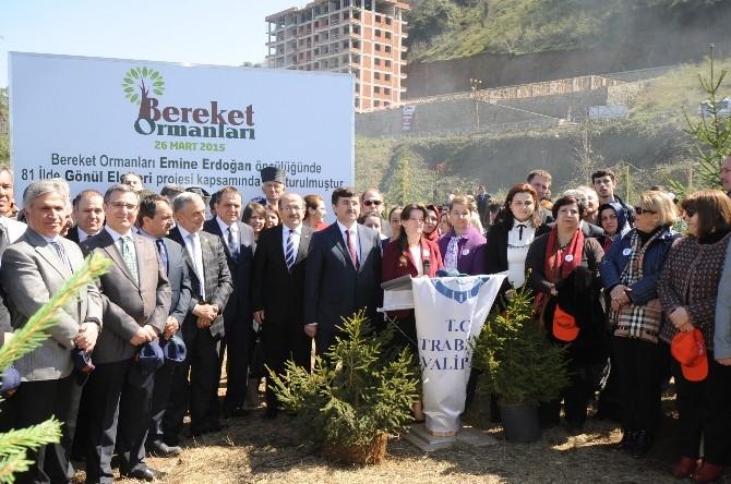 Trabzon'da Bereket Ormanı'na İlk Fidanlar Dikildi