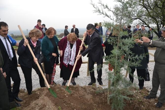 Manisa'da Gönül Elçileri 'Bereket Ormanı' Oluşturdu