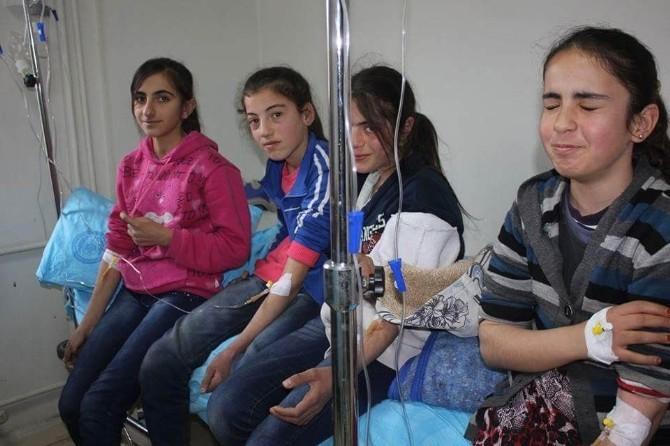Lice'de 33 Öğrenci Zehirlendi