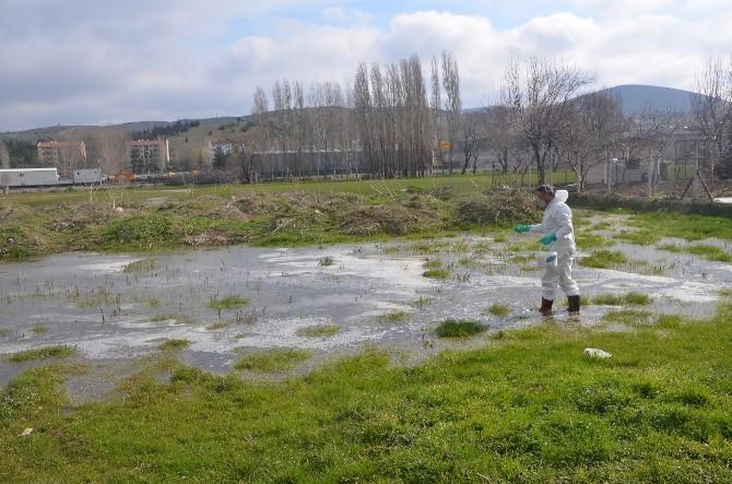 Bozüyük'te Larva Mücadelesi Su Birikintilerinde Devam Ediyor