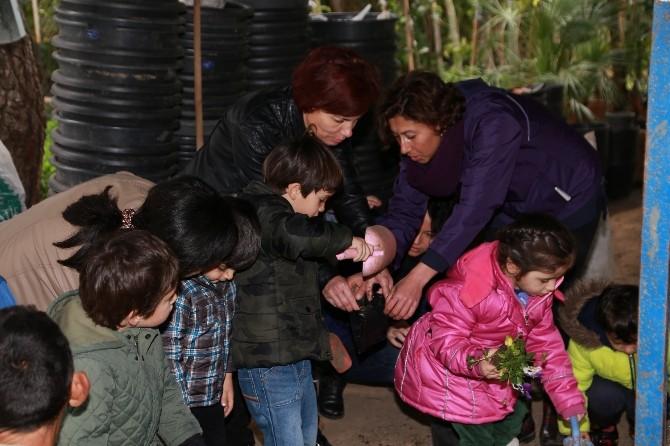 Minik Öğrenciler Orman Haftası'nda Çiçek Dikmeyi Öğrendi