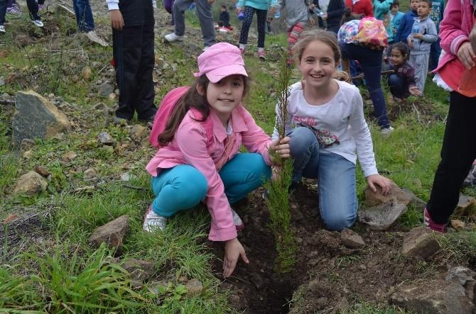 Ormancılık Haftası'nda 3 İlçede 5000 Fidan Toprak İle Buluştu