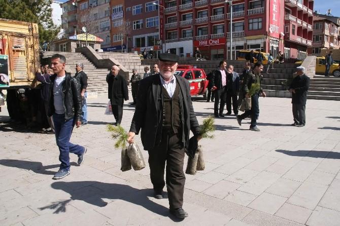 Yozgat Orman İşletme Müdürlüğü Vatandaşa Ücretsiz 5 Bin Fidan Dağıttı