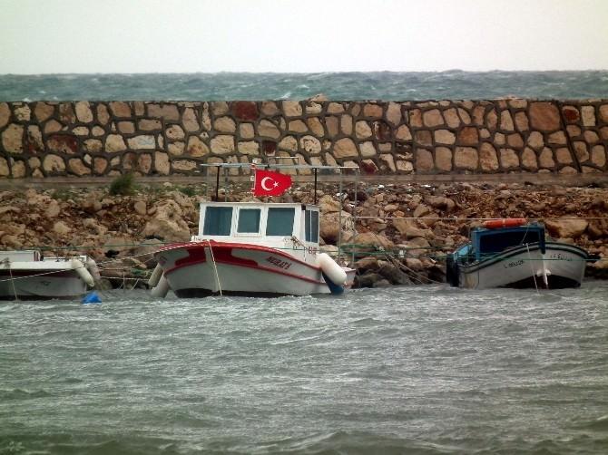 Didim'de Lodos Balıkçıları Olumsuz Etkiledi
