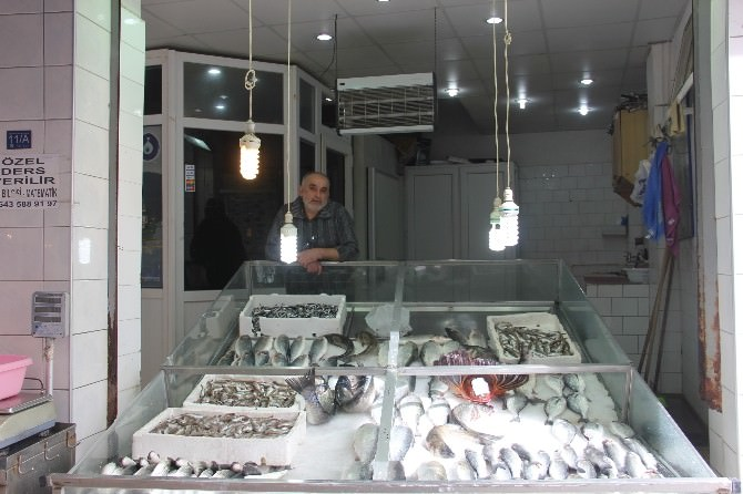 Sinoplu Balıkçılar Mart Ayından İstediğini Alamadı