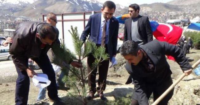 Hakkari'de Erdoğan için hatıra ormanı