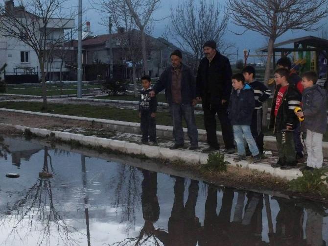 """Cadde """"Göl""""de Balık Tutmaya Çalıştılar"""