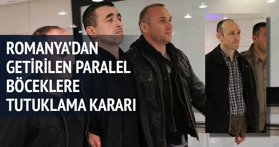 Romanya'dan getirilen paralel böceklere tutuklama