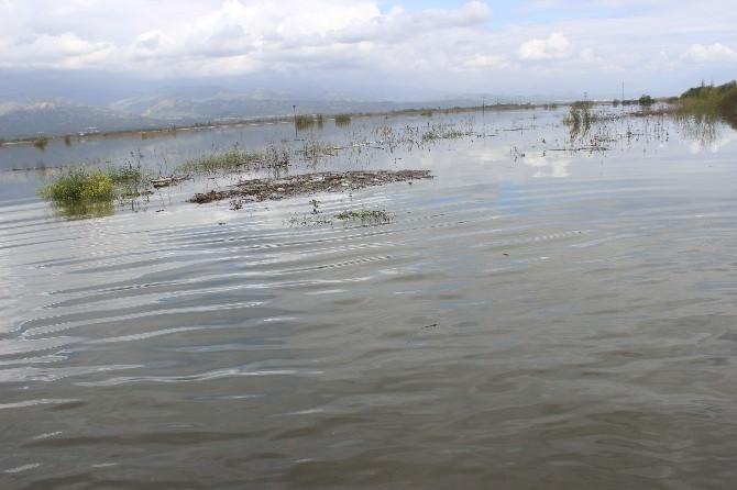 Aydın'da Barajların Kapakları Açılınca Aydın Ovası Göle Döndü