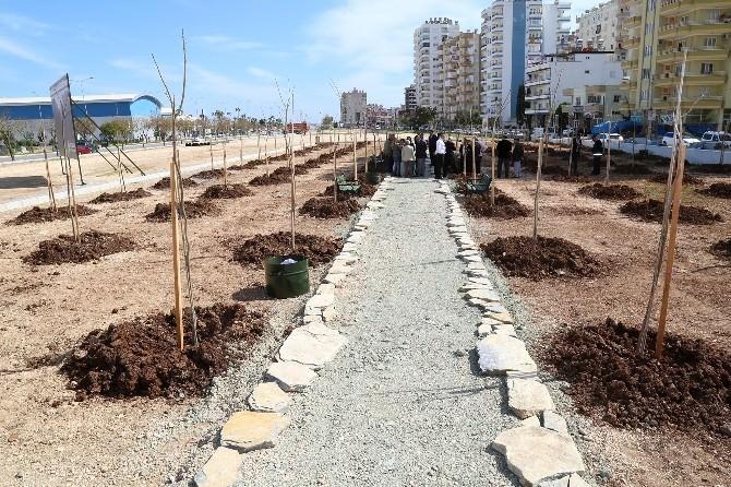 Mezitli'de 'Özgecan Aslan' Korusu Açıldı