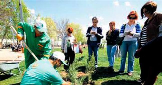 Bahçıvan adayları için müthiş fırsat