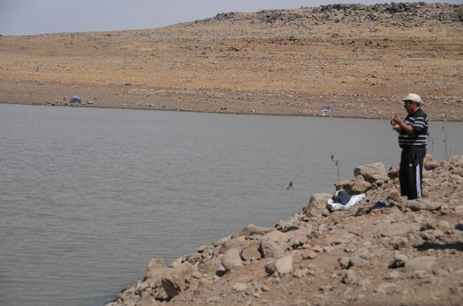 Tatlı Su Kaynaklarında Balık Avlanması Yasak