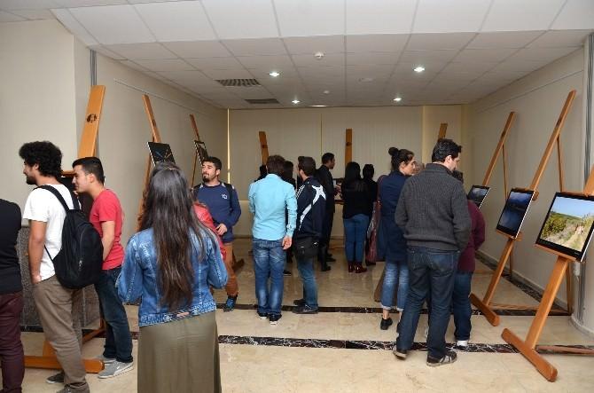 MEÜ Gazetecilik Bölümü Öğrencileri Çalışmalarını Sergiledi