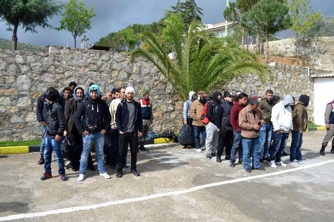 'Araç Bozuldu' Diyerek Yetmiş Kaçağı Bırakıp Kaçtılar