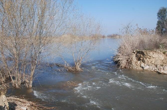 Aydın'da Sel Can Aldı