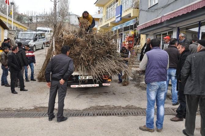 Bursa'dan Tunceli'ye 8 Bin Fidan