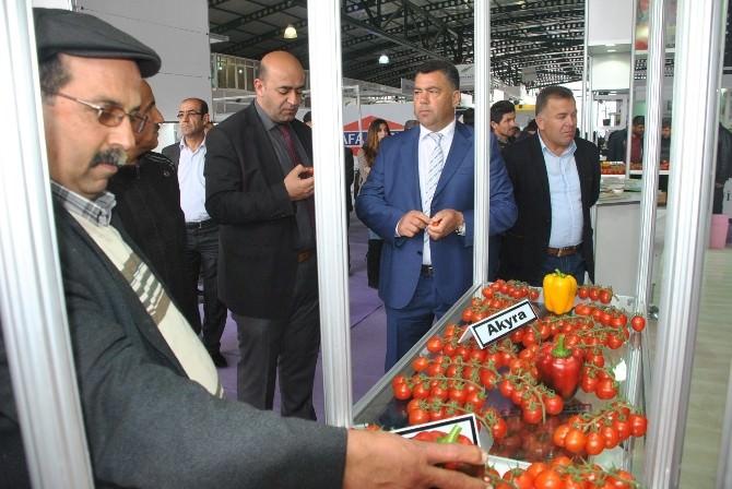 İkinci De-myra Tarım Festivali Demre'de Başladı