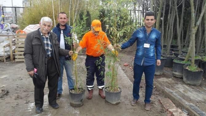 Nilüfer Belediyesi Bir Ayda 3 Bin Fidan Dağıttı