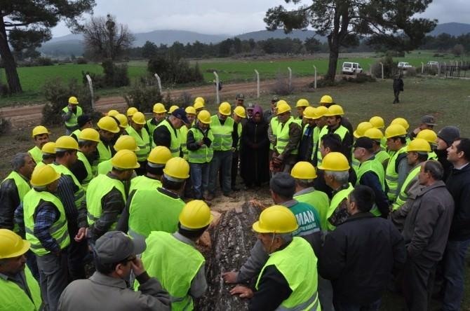 Ağaç Kesme Ve Boylama Kursiyerleri, Alanda Uygulama Yaptı