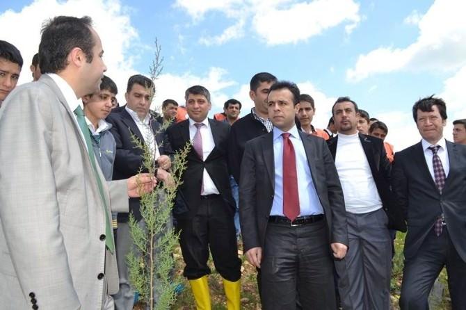 Şehit Savcı Kiraz'ın İsmi Hatıra Ormanına Verildi