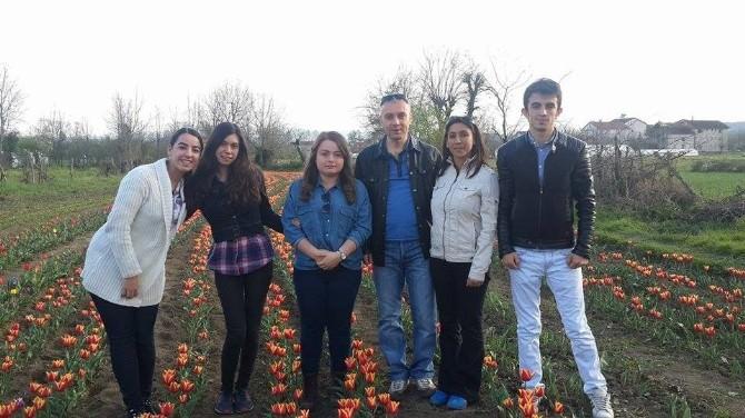 Çaycuma'daki Lale Bahçesine Büyük İlgi