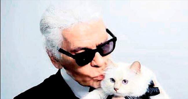 Kedisini de milyoner yaptı