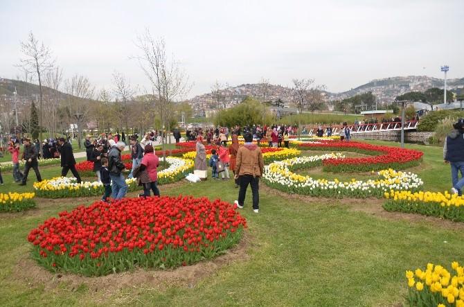 8. Sekapark Lale Festivali Başladı