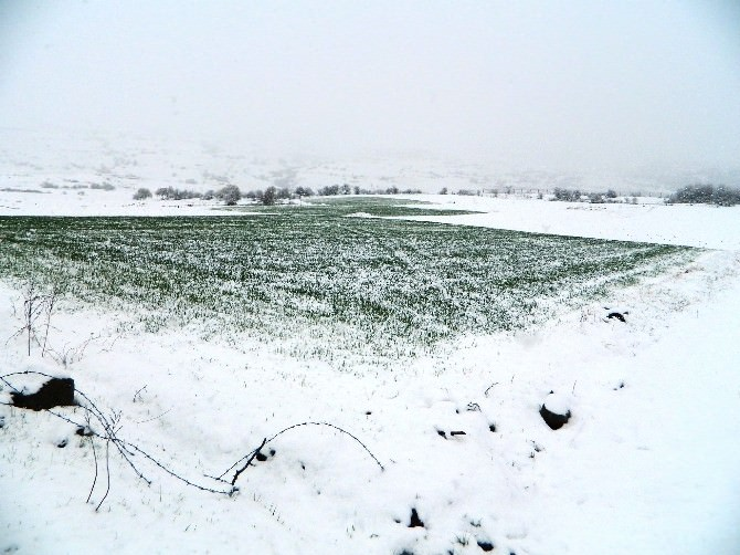 Posof'ta Kar Yağışı