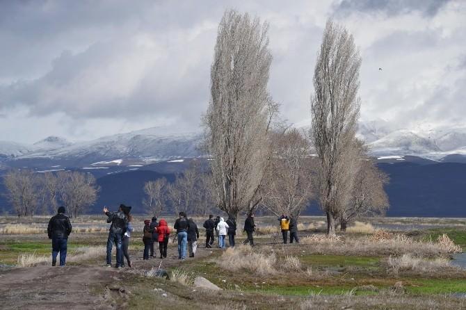 Erzurum Ovasında Kuş Gözlemlediler